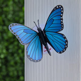 Stickerpop™: Blue Morpho Butterfly (5 Pack)                                   pop up card - thumbnail