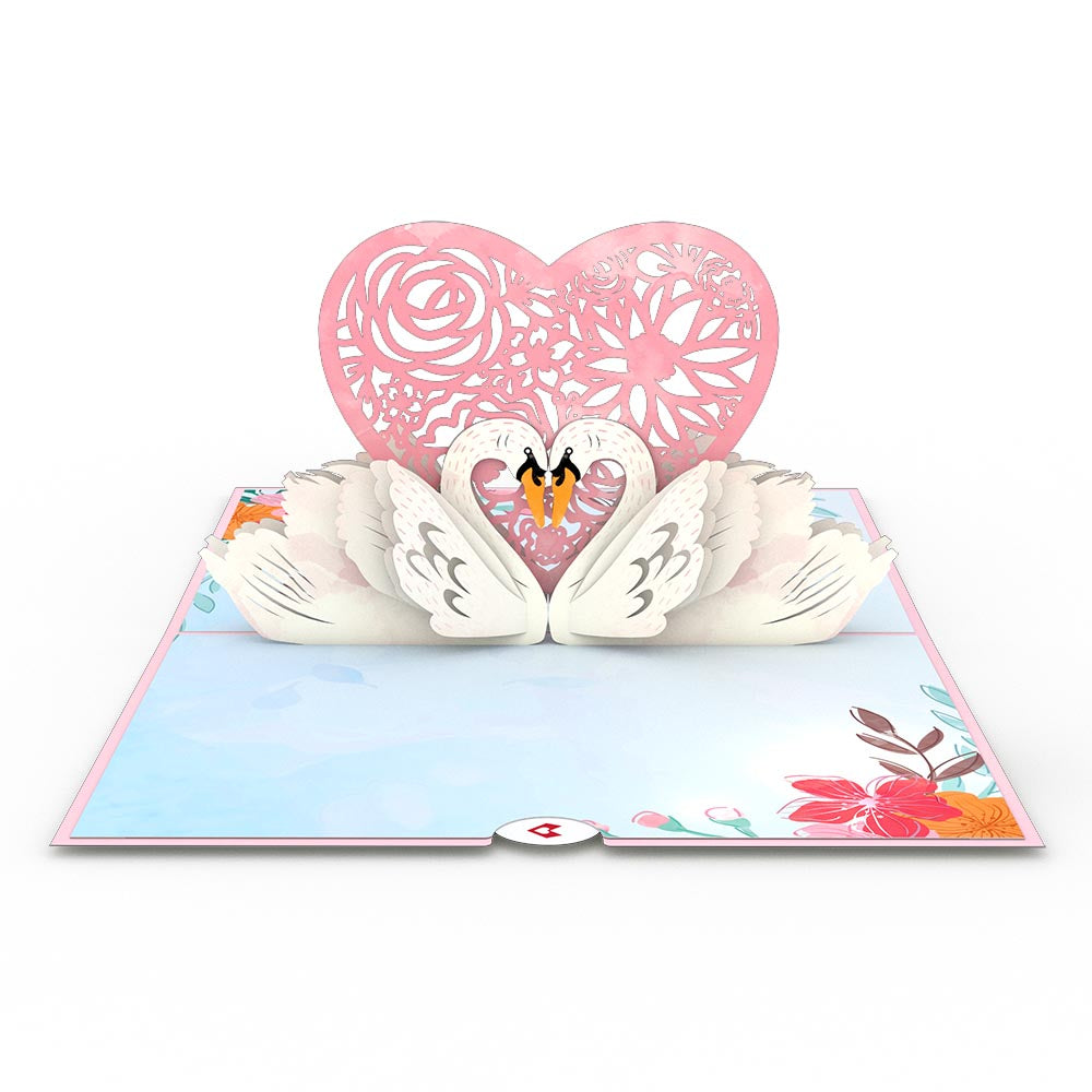 Swans             pop up card