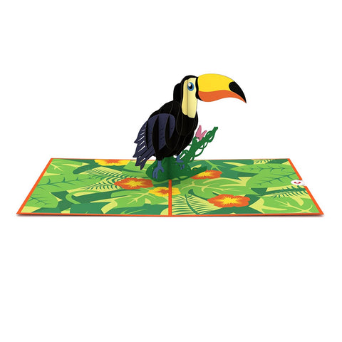 Toucan Pop up Card greeting card -  Lovepop