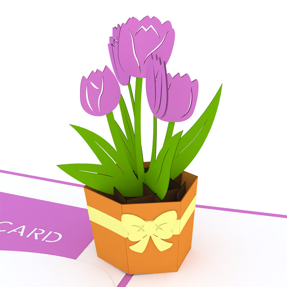 Tulip Bouquet Gift Card pop up card