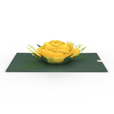 Yellow Rose Bloom greeting card -  Lovepop