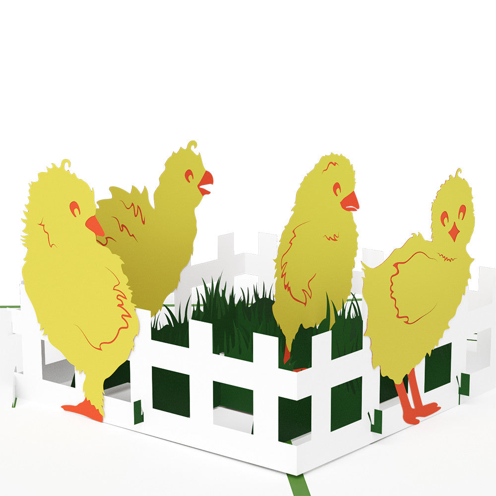 Baby Chicks pop up card
