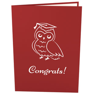 Wise Owl Pop Up Graduation Card