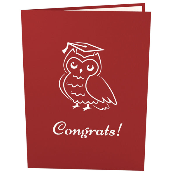 3D Graduation Owl Pop Up Card - Lovepop