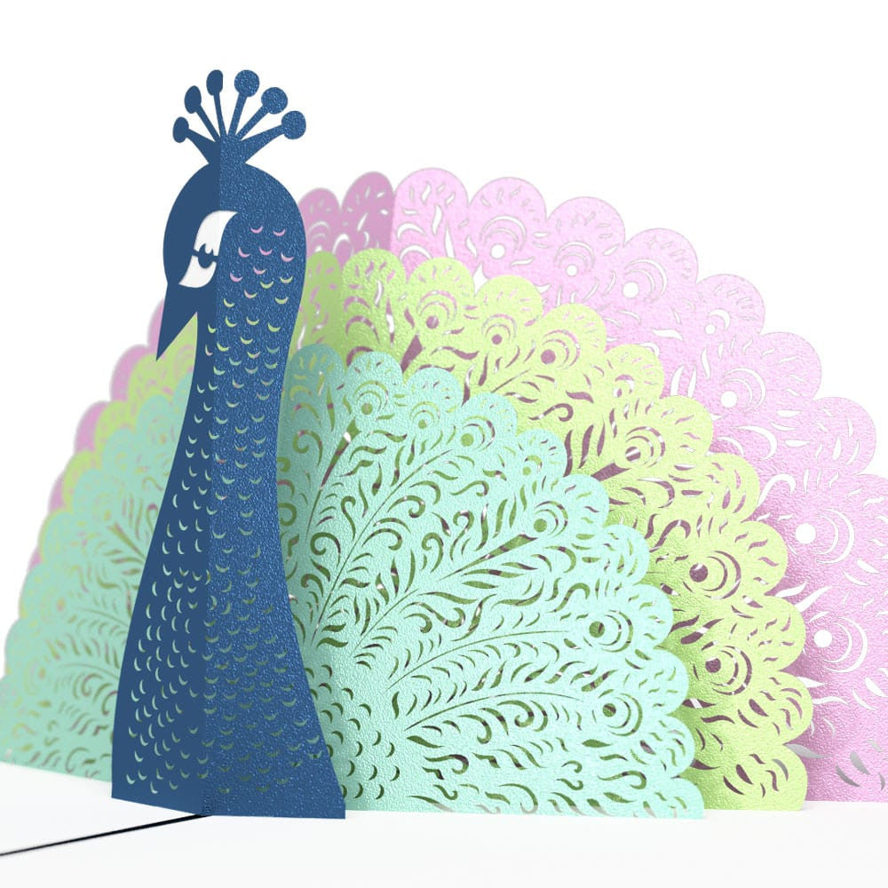 Peacock birthday pop up card
