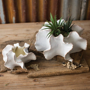"Large Ceramic ""Ruffle"" Planter"