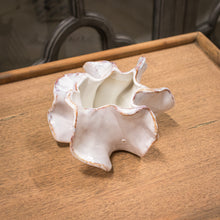 Load image into Gallery viewer, Ceramic Ruffle Planter