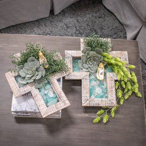 Hops Hanging Bush - Green Cream