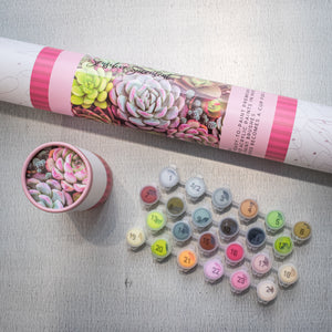 Pink Picasso Paint By Numbers Kit - Sensitive Succulents