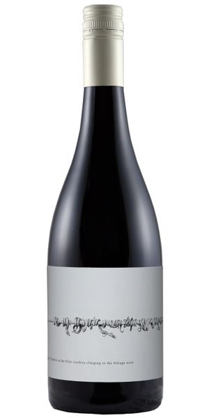2018 Shiraz - M&J Becker Wines