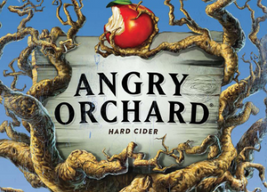 Angry Orchard Crisp Apple 6 Pack Cider