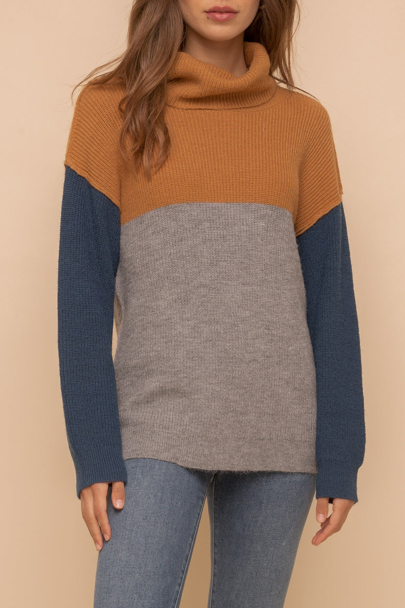 Color block Turtleneck