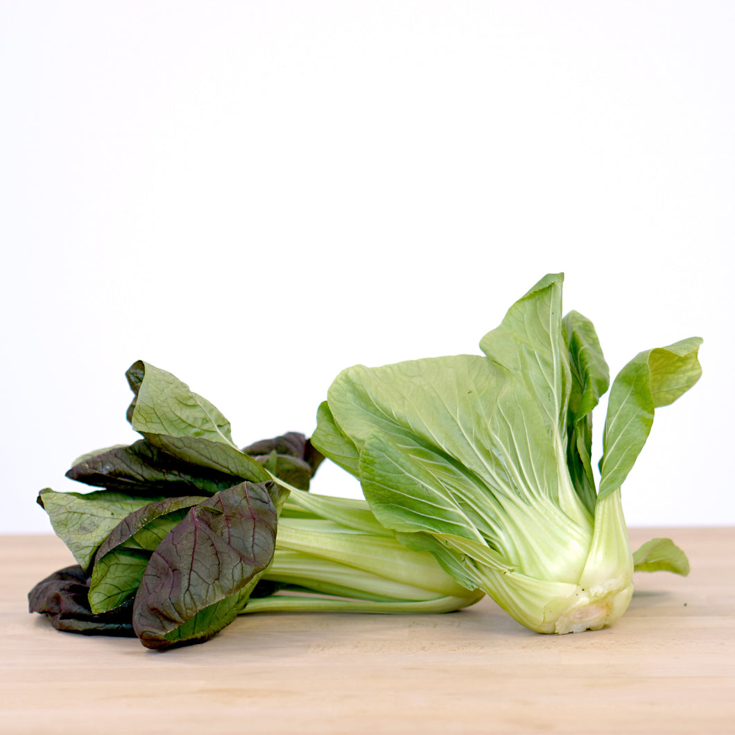 Bok Choy (Red/Green 2-pack)