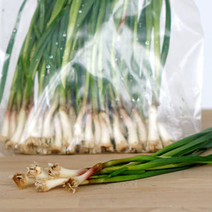 Green Garlic (5-stalk bunch)