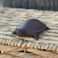 Cast Iron Turtle
