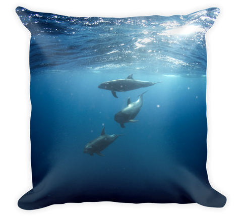 Decorative Throw Pillow / California Dolphins in Pacific Ocean - Cal31.com