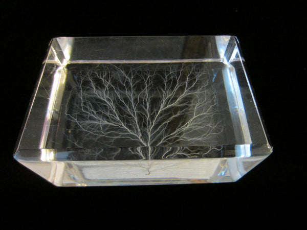 White Tree Encased Art Deco Lucite Paperweight