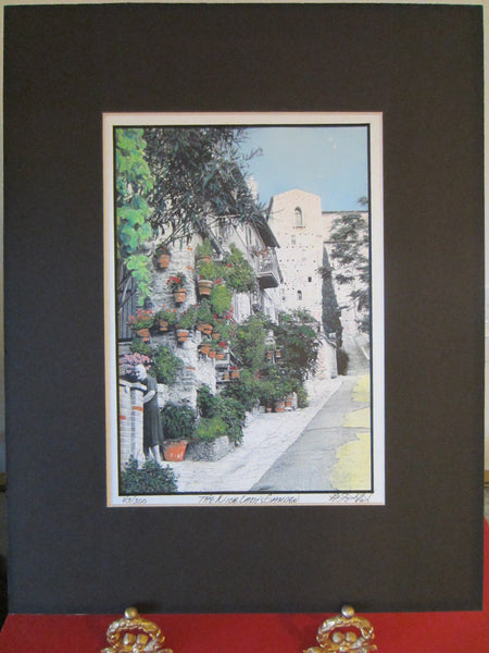 The Nice Ladys Garden View Signed Art Limited Edition - Designer Unique Finds   - 1