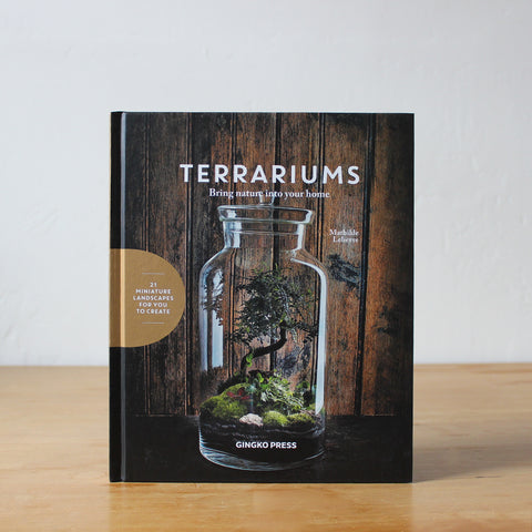 Terrariums: Bring Nature into Your Home