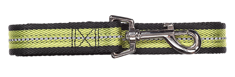 Pawise: Dog Reflective Leash - Green/Medium (1.2m/20mm)