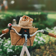 EW-18 with pretzel and water for picnic in front basket