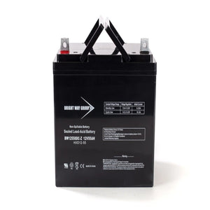 Bright Way Group BW12550 Z (Group 22NF) - 12V 55AH SLA Battery