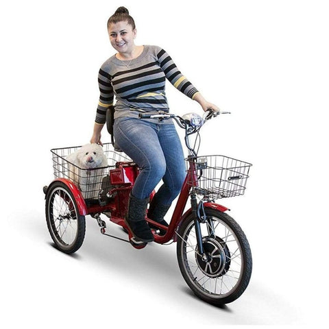 EWheels EW-29 Electric Tricycle for Adults With Woman Smiling While Her Dog Rides In The Large Rear Basket