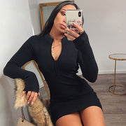 Tianna Long Sleeve Dress