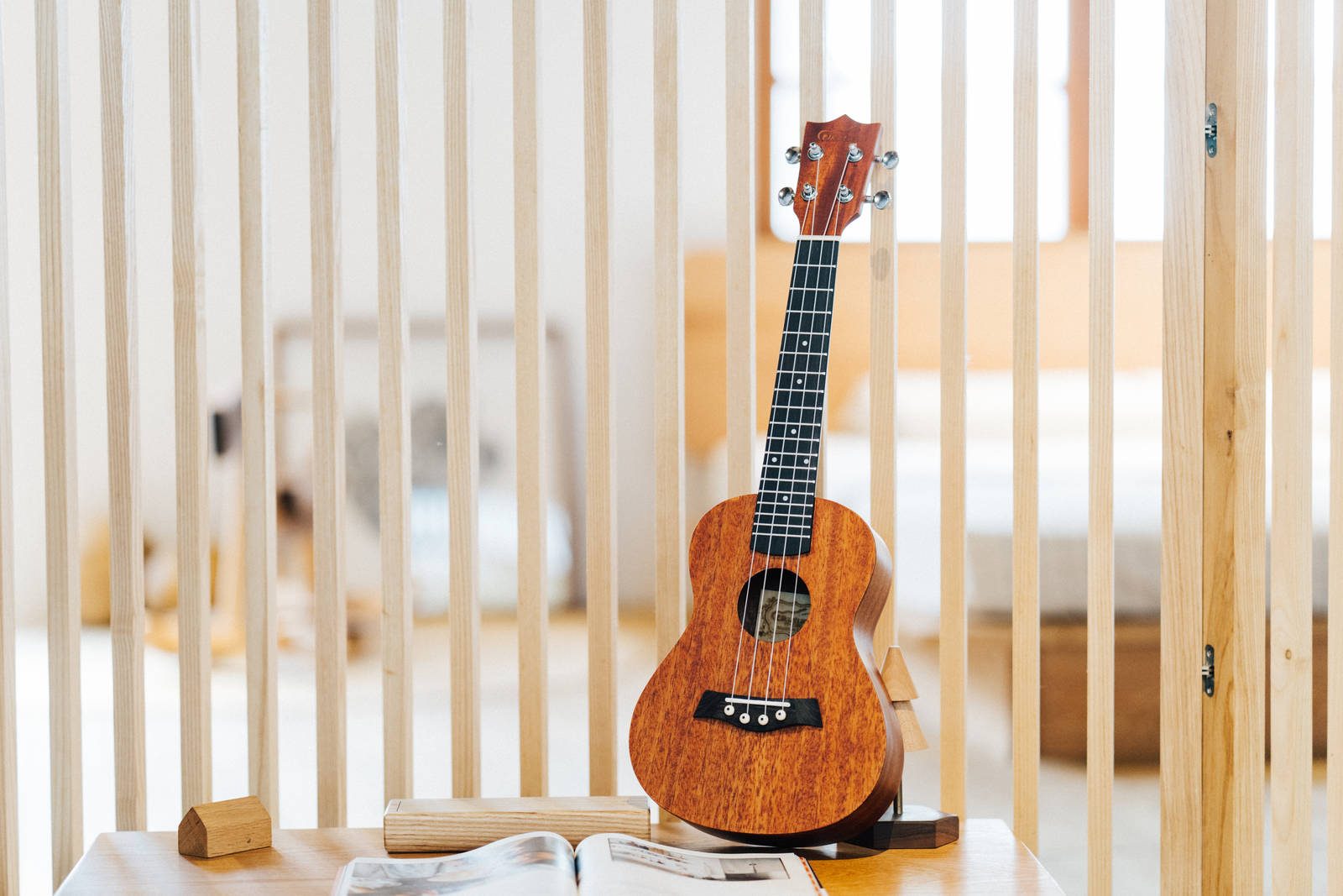 Top Best Electric Ukuleles in 2020