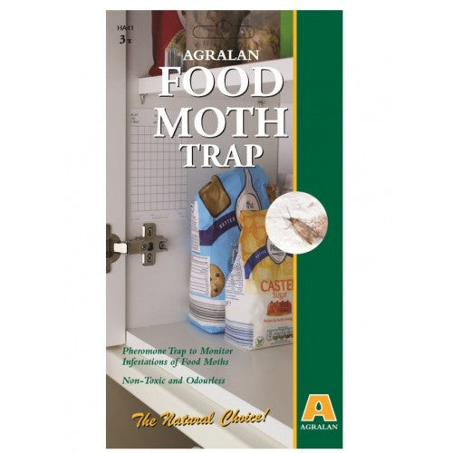 Food Moth Trap Pack of 3