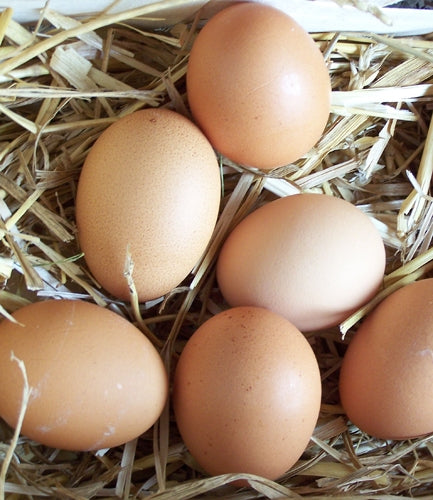 Free Range Eggs - Half dozen medium