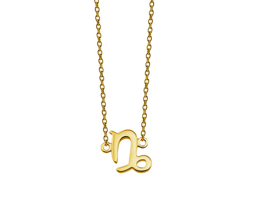 Zodiac Steenbok Ketting Gold-plated ZN001G Jwls4u