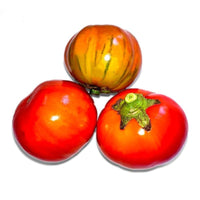 Heirloom Turkish Orange Aubergines 350 g