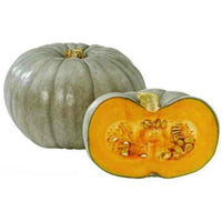 Crown Prince Pumpkin +-4kg