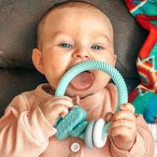 Ritzy Rattle With Teething Rings