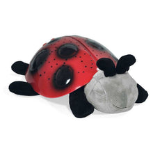 Load image into Gallery viewer, Cloud B Twilight Ladybug - Classic