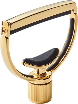 G7th Heritage Capo 18k Gold - Style 1