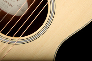 Martin OMCPA4 Performing Artist Acoustic Guitar - acousticcentre