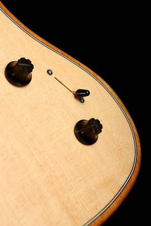 Martin D-35 Dreadnought Acoustic Guitar: Standard Series