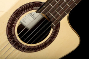 Martin DCPA4 Acoustic Electric Guitar: Performing Artist Series