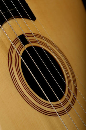 Martin D-28 Acoustic Guitar: Standard Series Reimagined