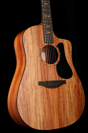 Martin   Acoustic Electric Guitar: Road Series