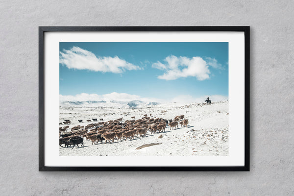 The Mongolia Collection | Kurt Vandeweerdt Photography