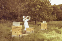 Load image into Gallery viewer, Twickenham Beekeeping Experience (2021 Season)
