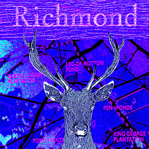 Richmond Park Collage