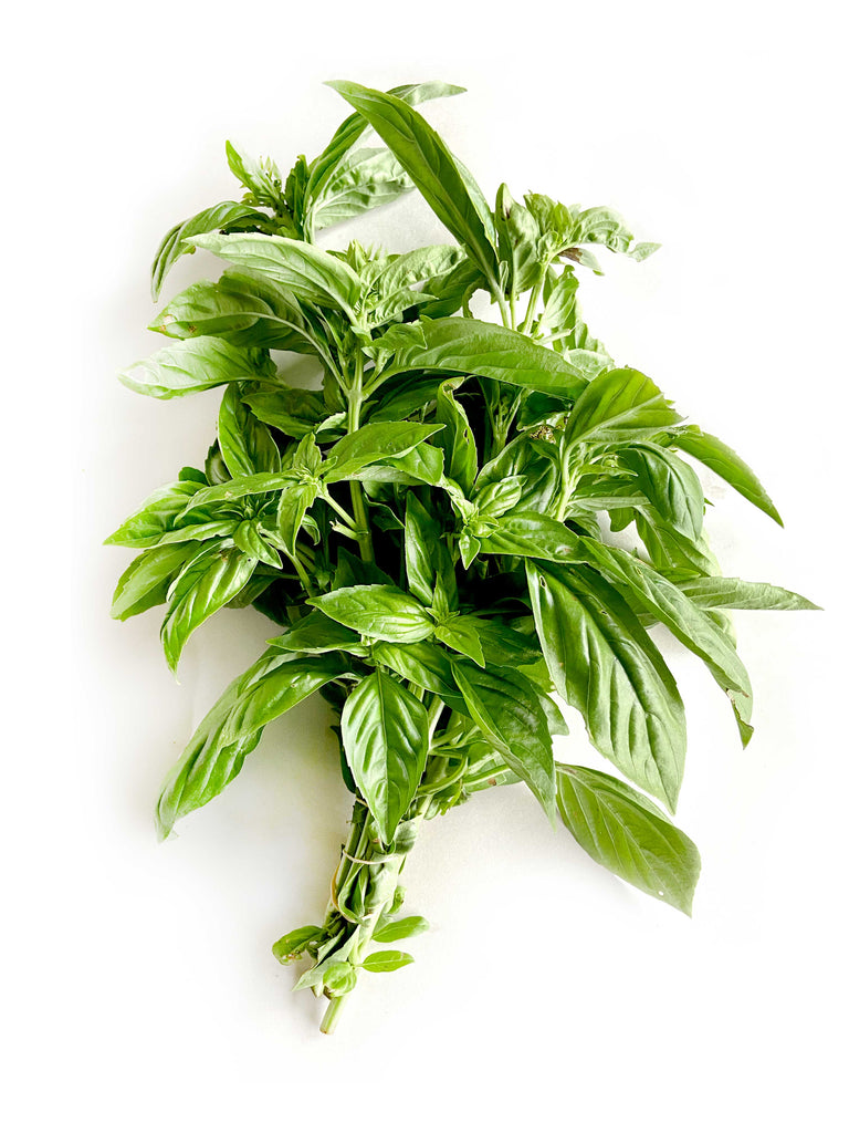 Sweet Basil - The Falls Farm