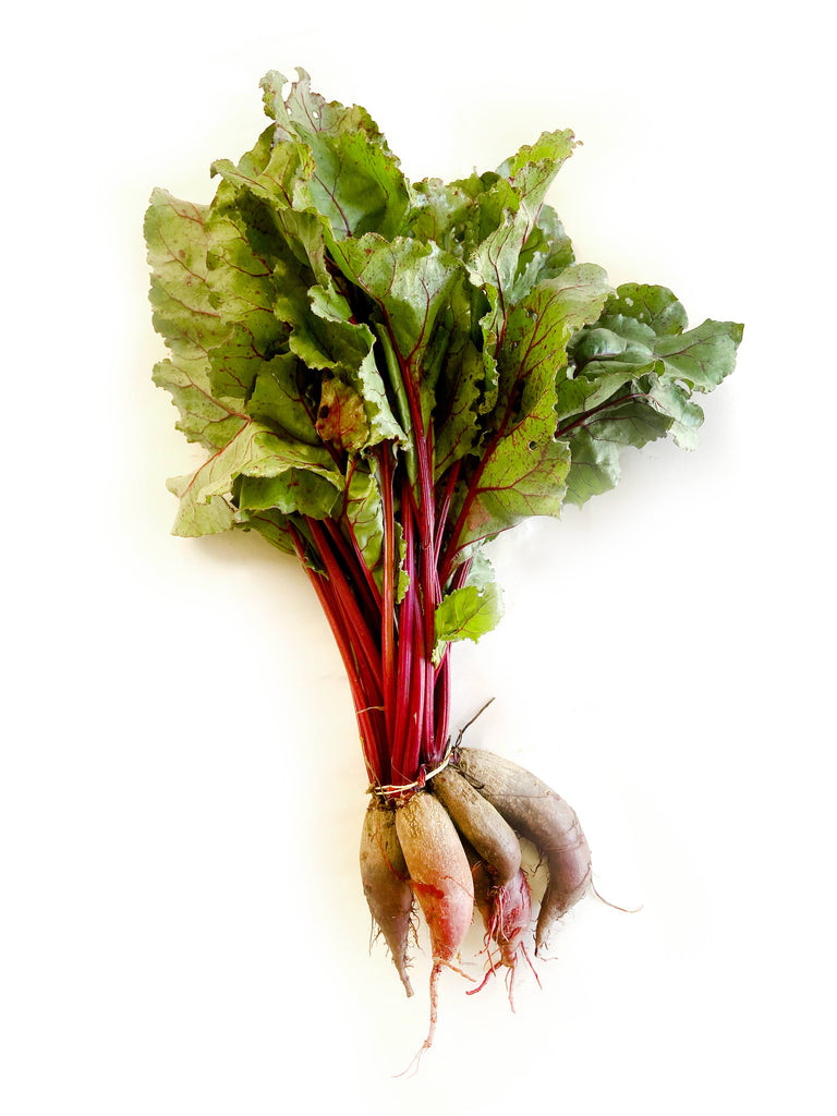 Cylindrica Beetroot - The Falls Farm