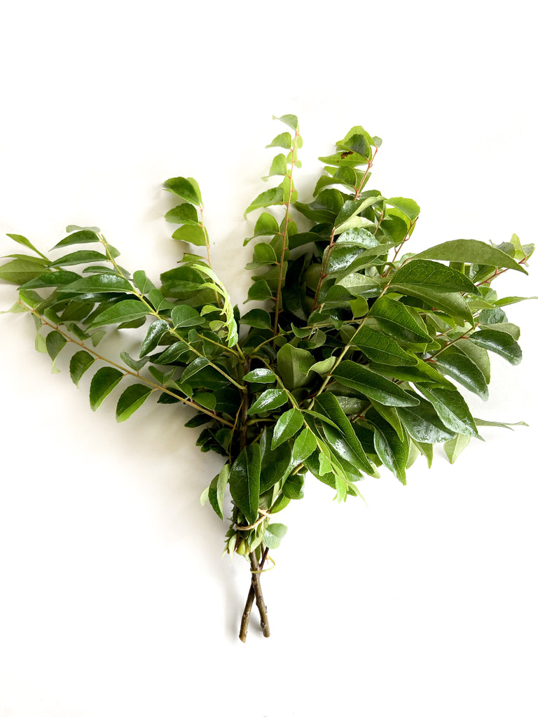 Curry Leaves - The Falls Farm