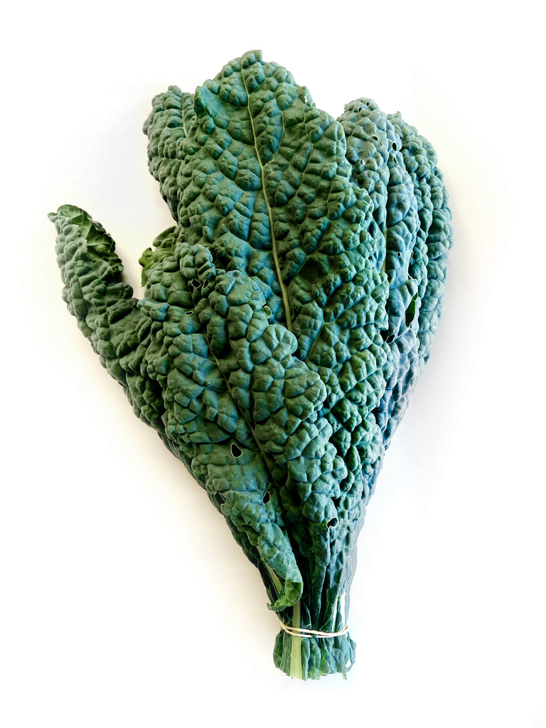 Cavelo Nero Kale - The Falls Farm