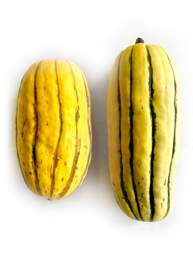 Delicata Squash 250gms - The Falls Farm